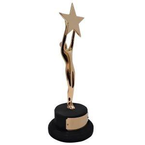 New Star Achievement Award Solid Metal